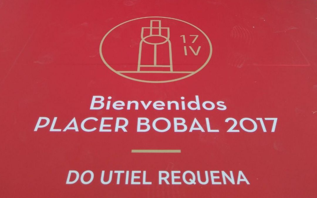 IV Placer Bobal 2017_ 19 Junio 2017